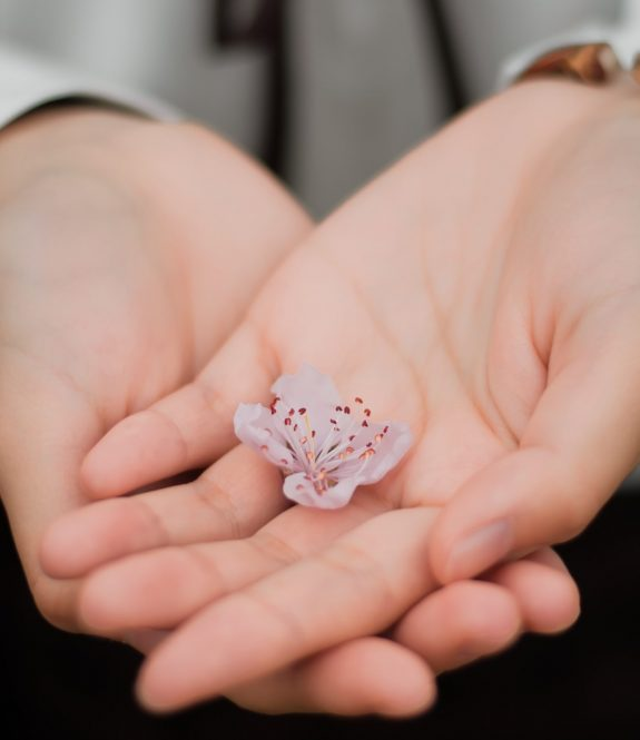 blur-close-up-flower-hands-460295